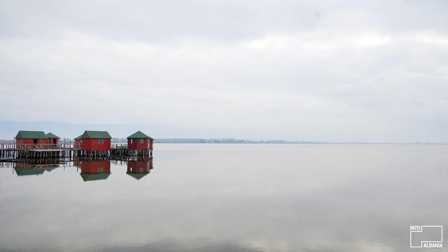 Laguna e Patokut, Lezhë, foto nga IntoAlbania.