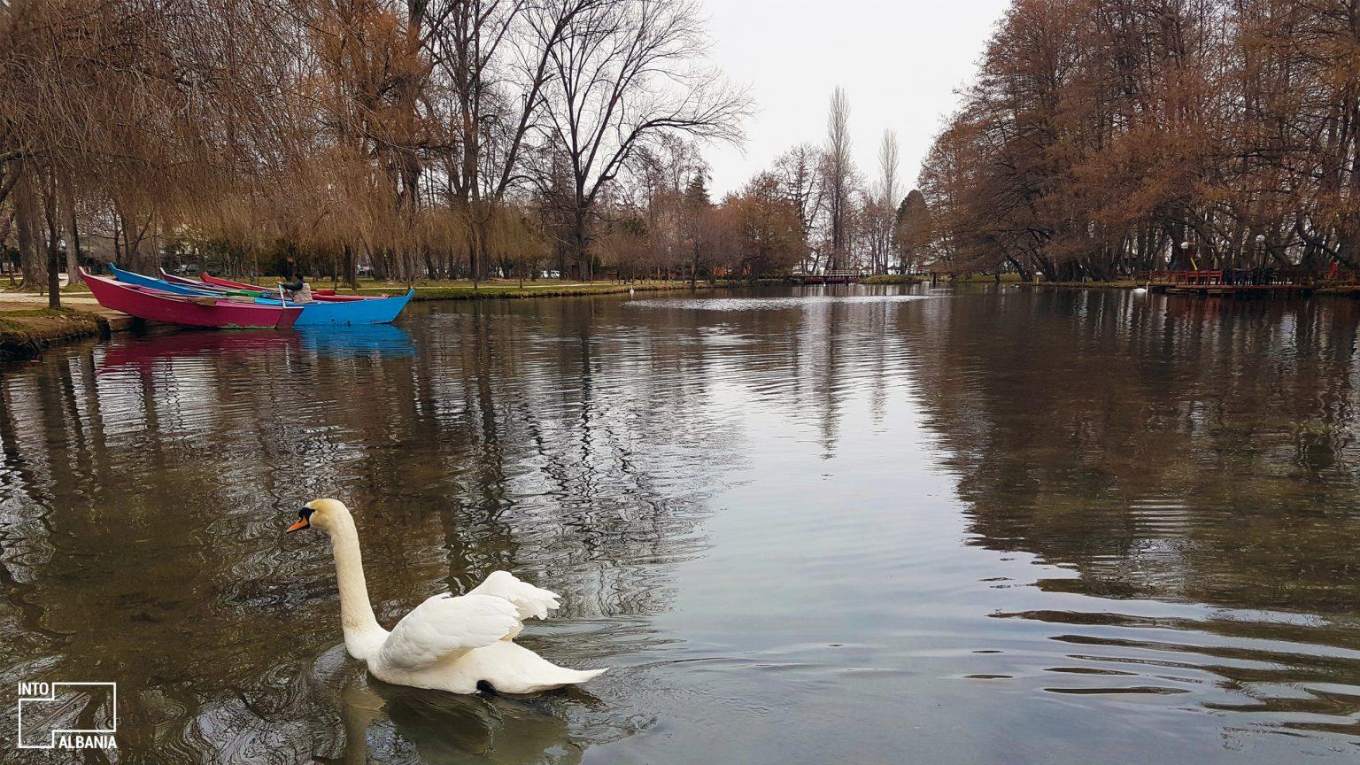 Burimet e Drilonit, Pogradec, foto nga IntoAlbania