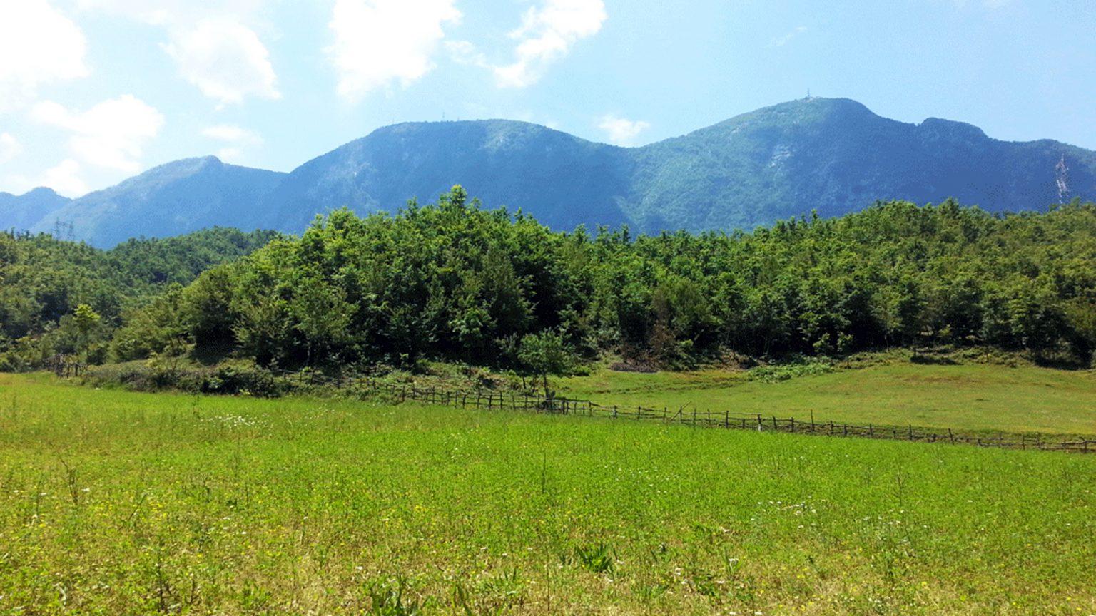 Parku Kombëtar i Dajtit, Tiranë, Burimi: Reporter.al