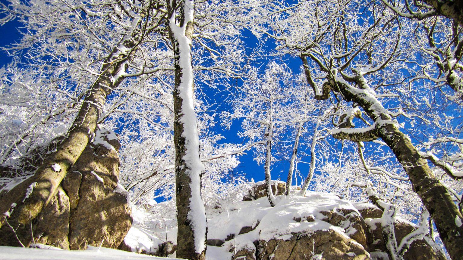 Dajti Mountain, Tirana, Source: wikimedia.org Fation Plaku.
