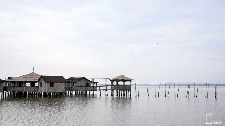 Patoku Lagoon, North Albania