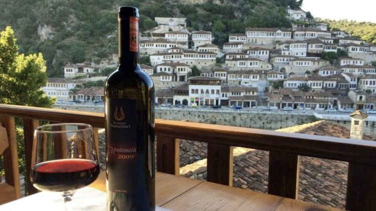 Wine Tasting in Berat