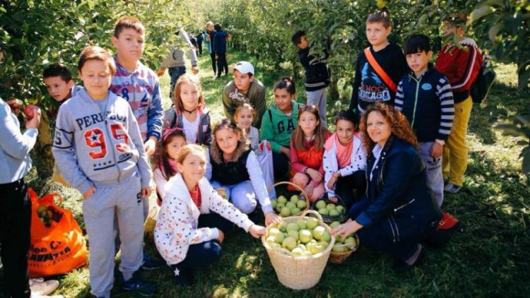 Apple Fest in Korça