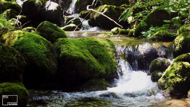Parku Kombëtar Shebenik-Jabllanicë