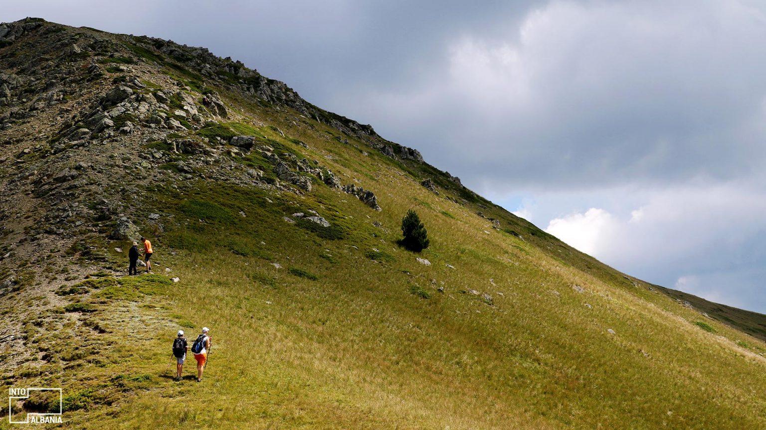 Maja e Malit të Kallkanit, foto nga IntoAlbania.